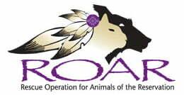 GivingTuesday - ROAR logo